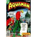 Aquaman Coleção Digital HQs Digitais Tablet Ou Pc