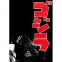 Godzilla: King of the Monsters dvd legendado em portugues